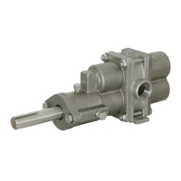 ECO Rotary Gear Pumps
